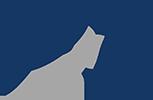 Petraenovus Consulting Logo